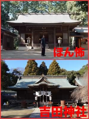ほん怖2019:佐藤健のロケ地【神社】