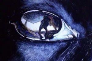 大野智と夏目鈴の匂わせ画像:ブルドッグの目