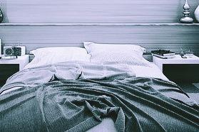 石破茂のベッド画像と動画